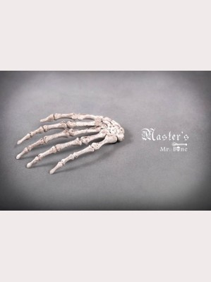Classical Puppets Master's-Mr.Bone Hairclip